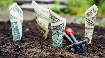 Bondora Go & Grow: Meine Erfahrungen mit der P2P-Plattform