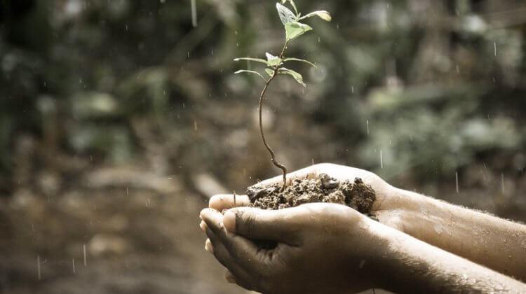 """""""Nachhaltiges Crowdfunding"""" – Interview mit Patrick Mijnals von bettervest"""